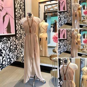 🌺 Bcbg  Fabulous Tan Velvet Silk Long Dress